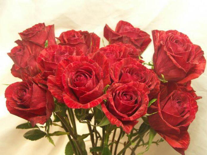 Букет из роз Рэд Интуишн
