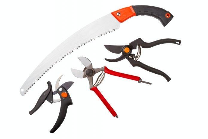 Инструменты для обрезки жимолости