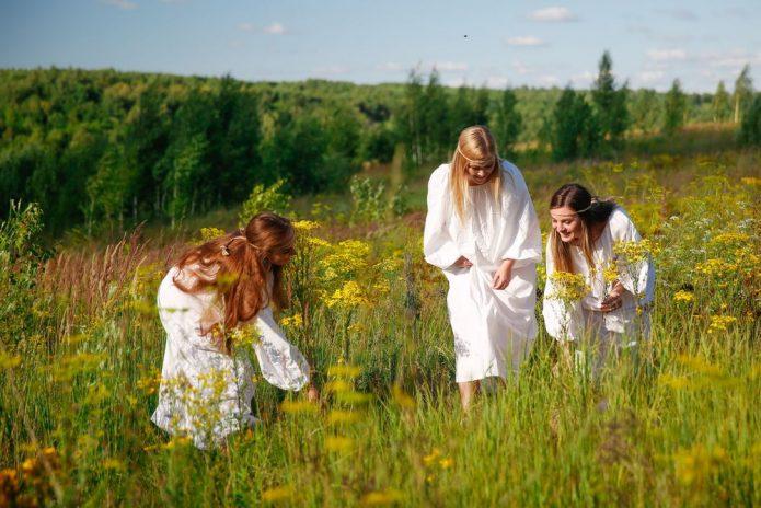 Девушки собирают травы