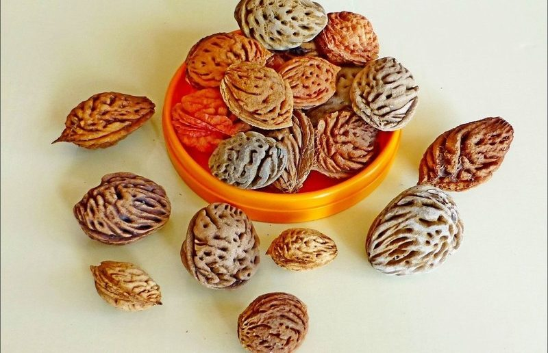 косточки персика