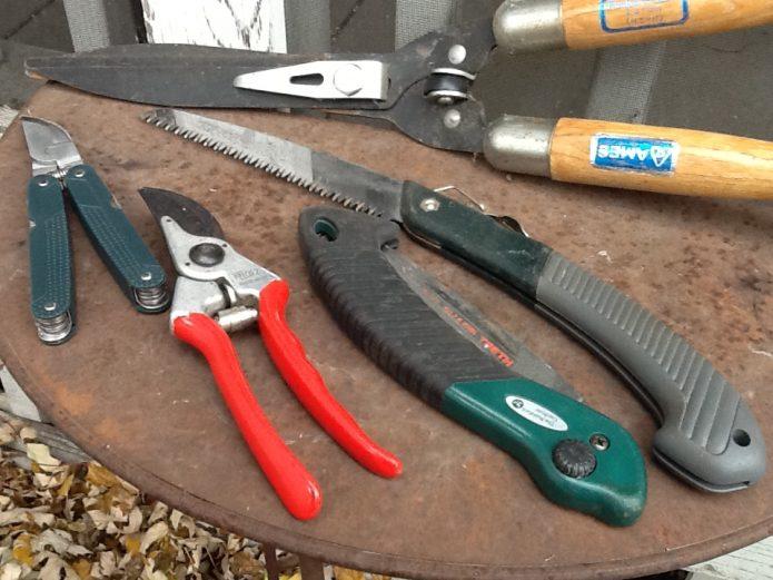 Инструменты для обрезки сливы