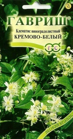 Семена видового клематиса
