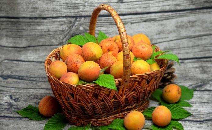 Дозревшие плоды в домашних условиях