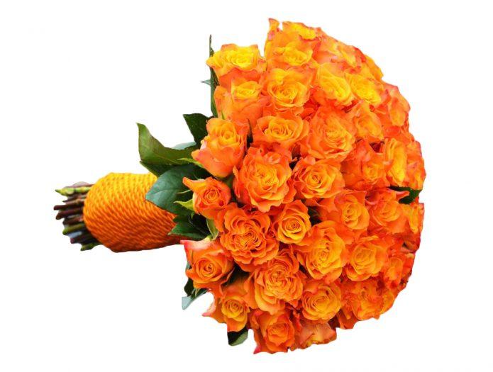 Оранжевые кустовые розы