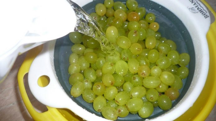 Светлый виноград