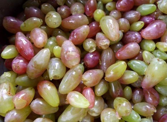 Мытые ягоды винограда