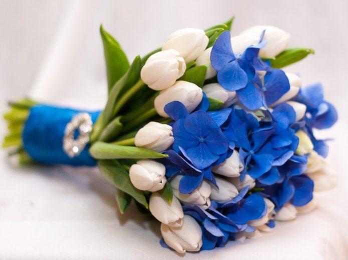 синие гортензии и белые тюльпаны