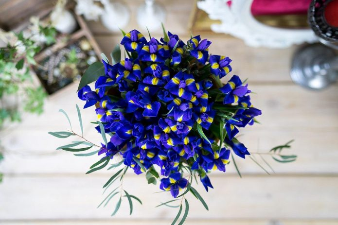 букет невесты из ирисов и орхидей