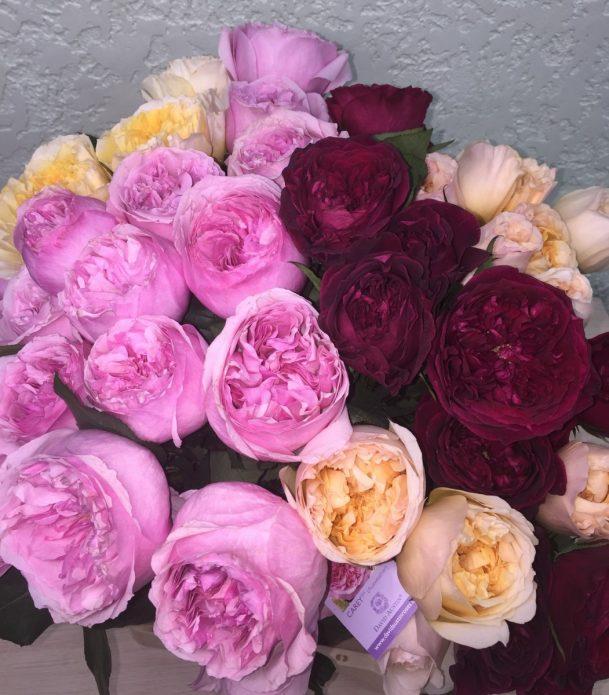 Разные сорта пионовидных роз