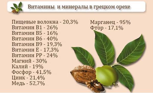 Количественный состав витаминов и минералов в грецких орехах