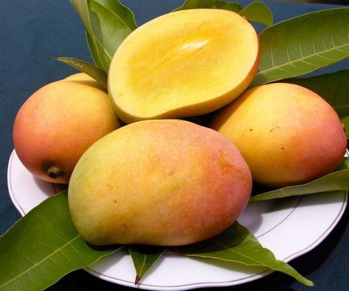 Зрелый плод манго