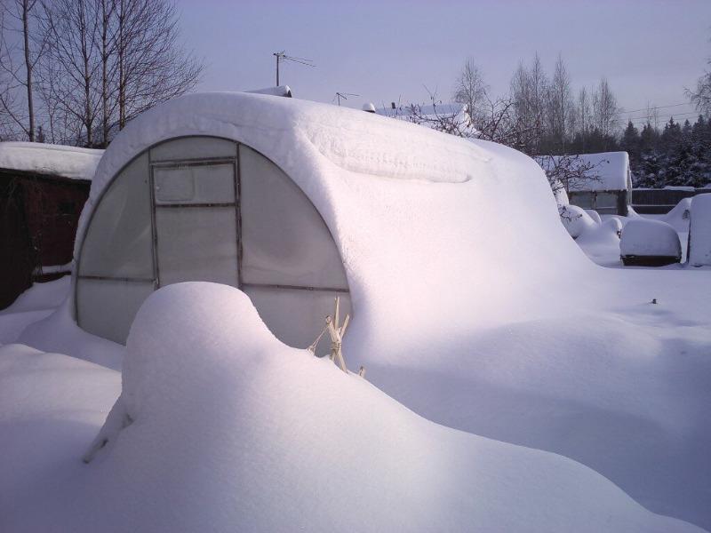 Причины, по которым нужно накидывать снег в теплицу