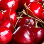 Пересадка вишни осенью на новое место — сроки, правила, инструкции с фото и видео